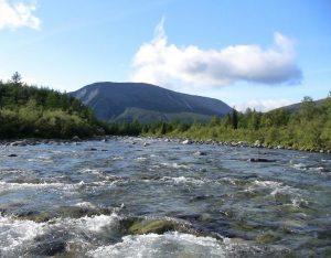 Река Народа