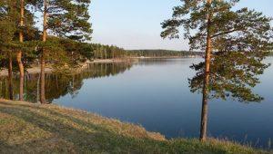 Озеро Иртяш берега