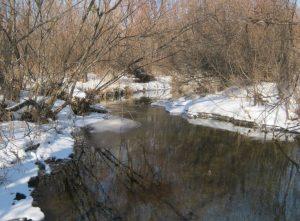 Река Сучан Партизанская зимой
