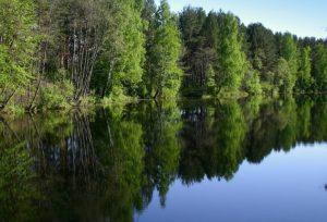 Тагил река
