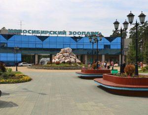 Новосибирск зоопарк