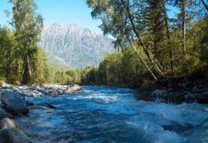 Заповедник Катунский река Катунь